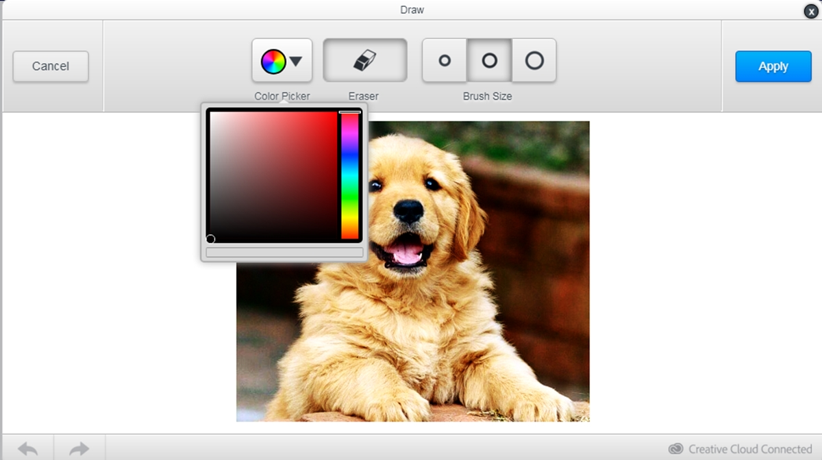 draw on image shopify